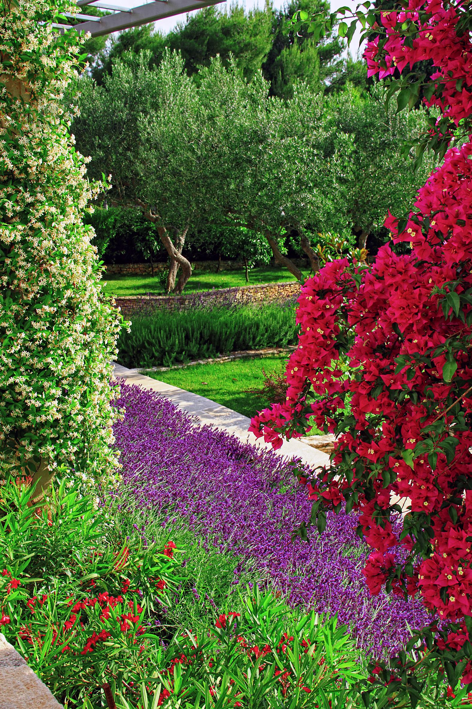 Resort_Velaris - Garden (9)